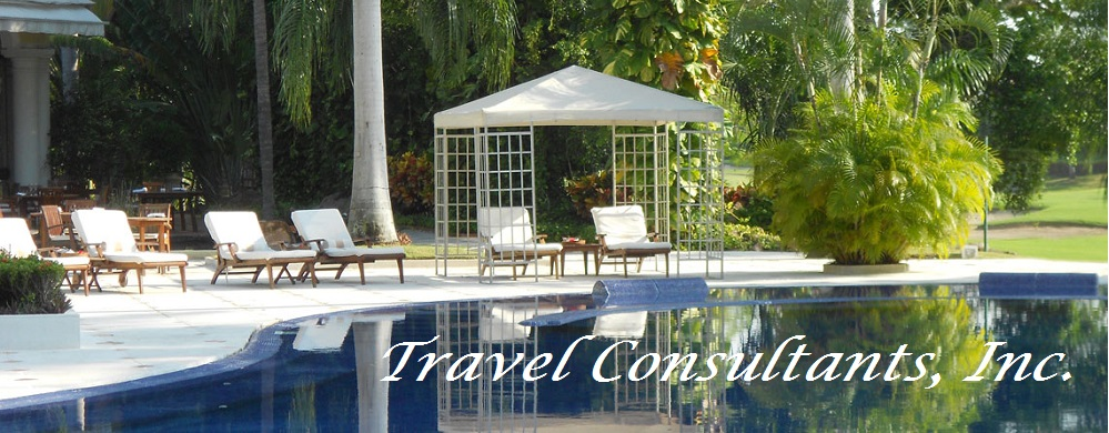 Home Travel Consultants Inc
